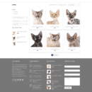 screencapture-eshopdemo-ru-kleocats-product-category-kittens-1514155935601